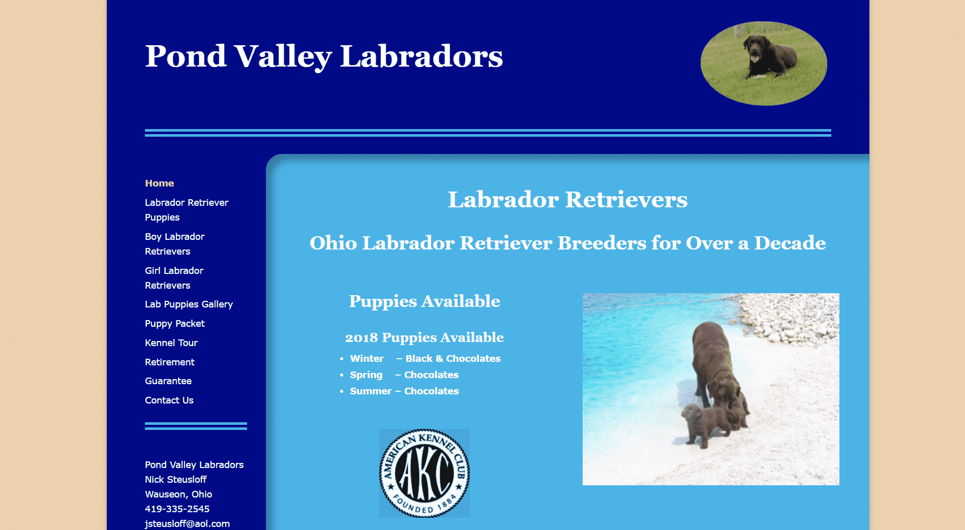 Pond Valley Labradors Ohio Labrador Retriever Breeders for Nearly 2 Decades website image